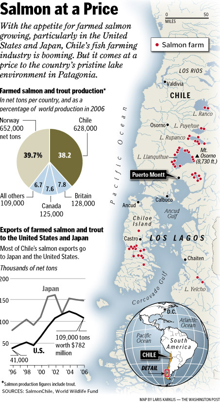 chile salmon farms