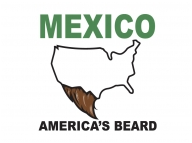 mexico usa beard