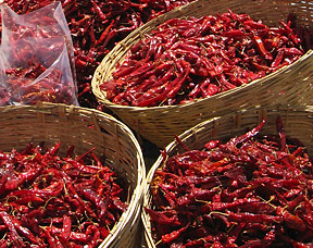 bhutan chile