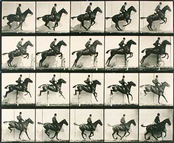 muybridge-1